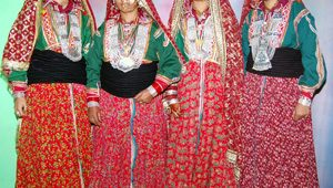 Gaddi Ladies Himachal